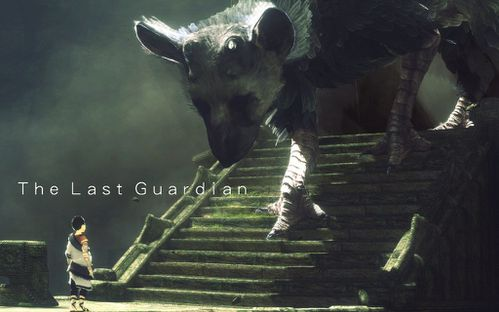 http://a405.idata.over-blog.com/500x312/4/02/56/54/NEWS-000001/the_last_guardian_wallpaper_by_crossdominatrix5-d2zaubl.jpg
